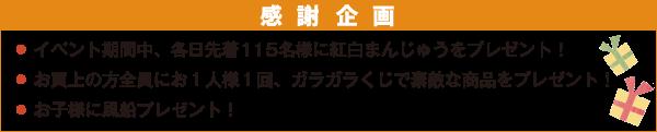 aki_matsuri5