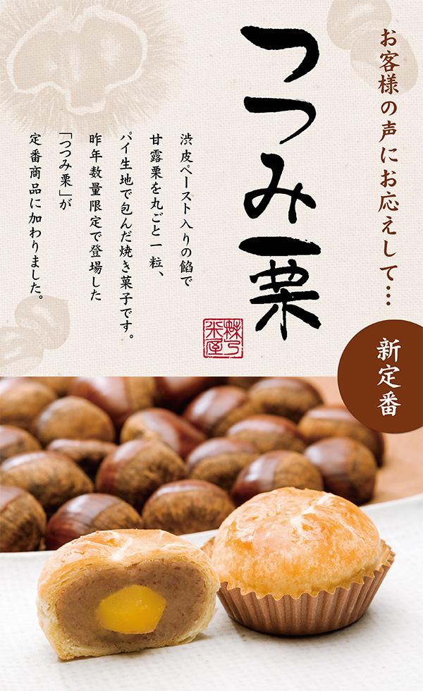 tsutsumi_600-980